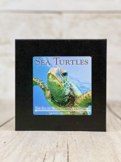 Sea Salt Turtles