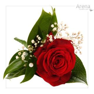 Red Rose Boutonniere with Baby\'s Breath (B6)