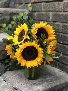 Jar of Sunflowers