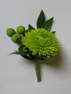 Lime Green Button Pomp Boutonniere (B4)