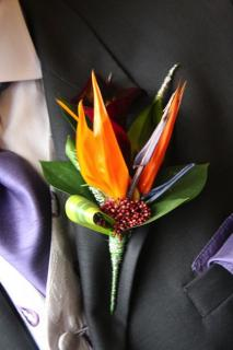 Bird of Paradise Boutonniere (B18)